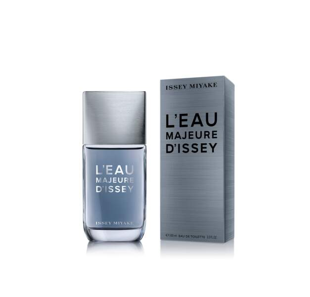 FIFI Awards 2018 : L'Eau majeure d'Issey Miyake, Issey Miyake - Famille boisée, facettes fougère et marine