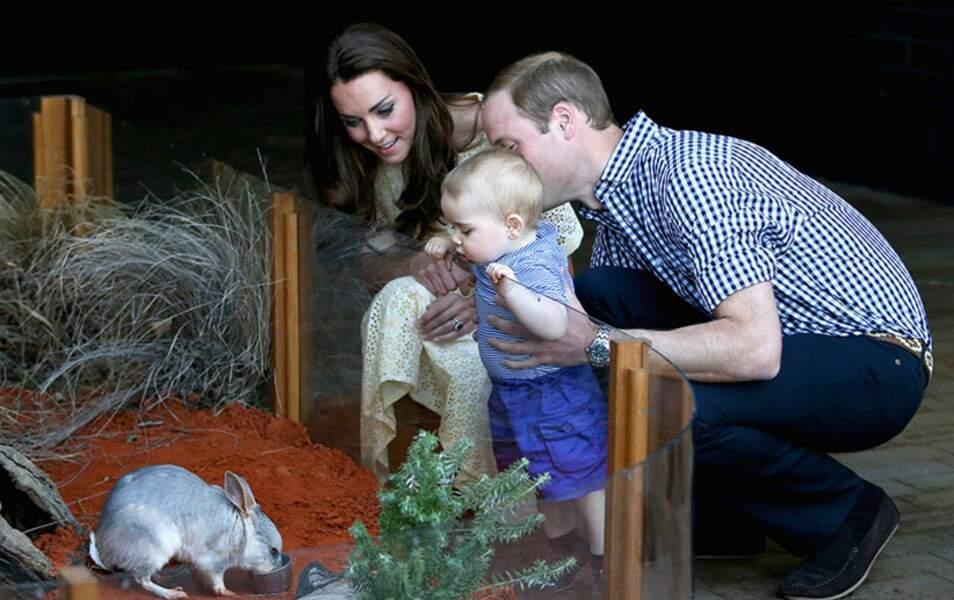 Le petit Prince veut voir les animaux de plus près