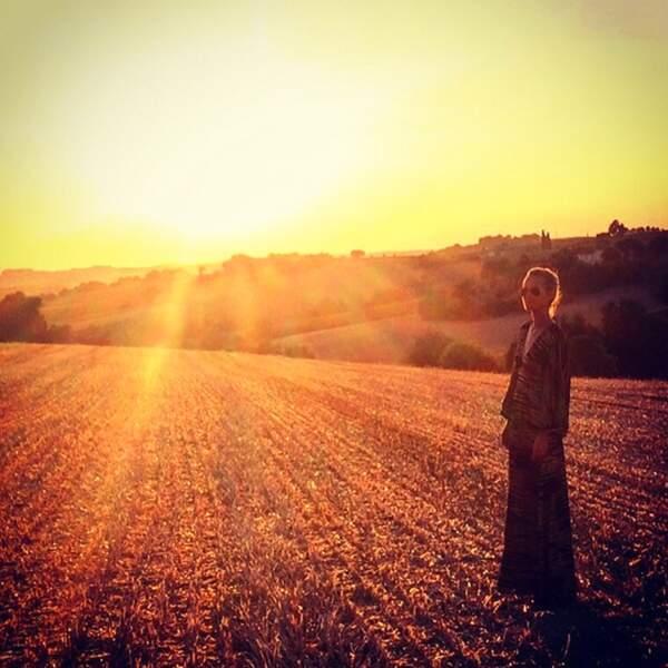 LA photo de coucher de soleil dans les champs