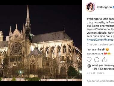 PHOTOS Incendie de Notre-Dame de Paris : sous le choc, les stars réagissent en masse