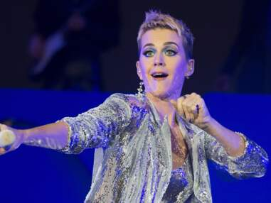 Katy Perry montre sa culotte en concert