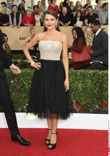 SAG Awards 2017 : Sofia Vergara