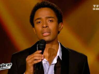 Que sont devenus les anciens finalistes de The Voice ?