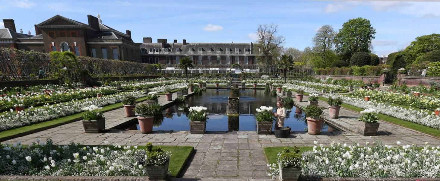 Le jardin est ouvert et gratuit jusqu'à la fin de l'été