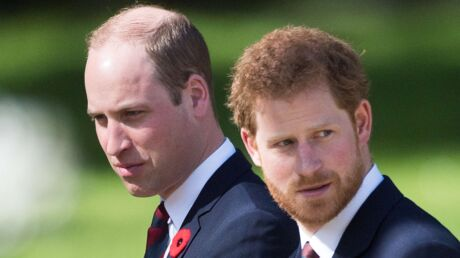 photos-les-princes-william-et-harry-devoilent-des-images-inedites-avec-lady-diana