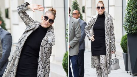 PHOTOS Céline Dion continue sa révolution avec un étonnant look manteau ET cuissardes 100 % serpent