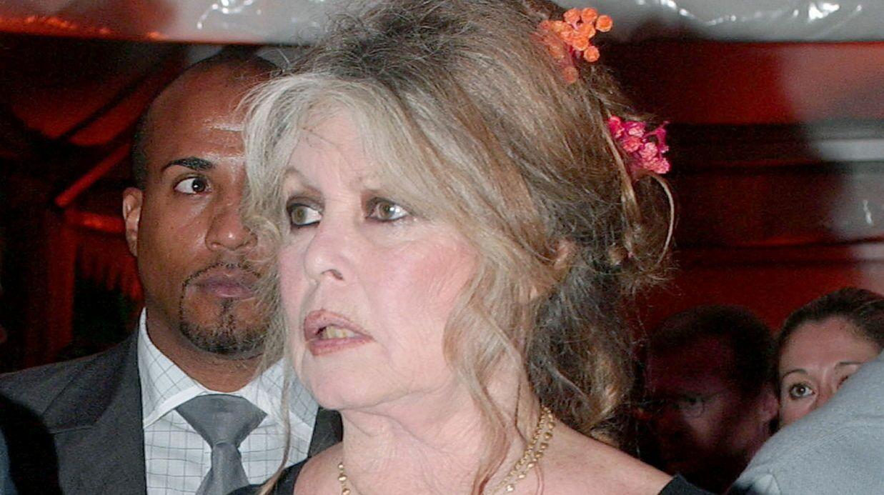 Brigitte Bardot tacle violemment Nicolas Hulot