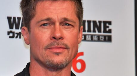 Une artiste française fait condamner Brad Pitt qui a mené son entreprise à la faillite