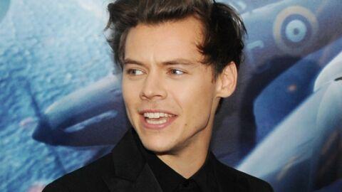 Harry Styles: une fan entreprenante lui attrape les parties intimes en plein concert