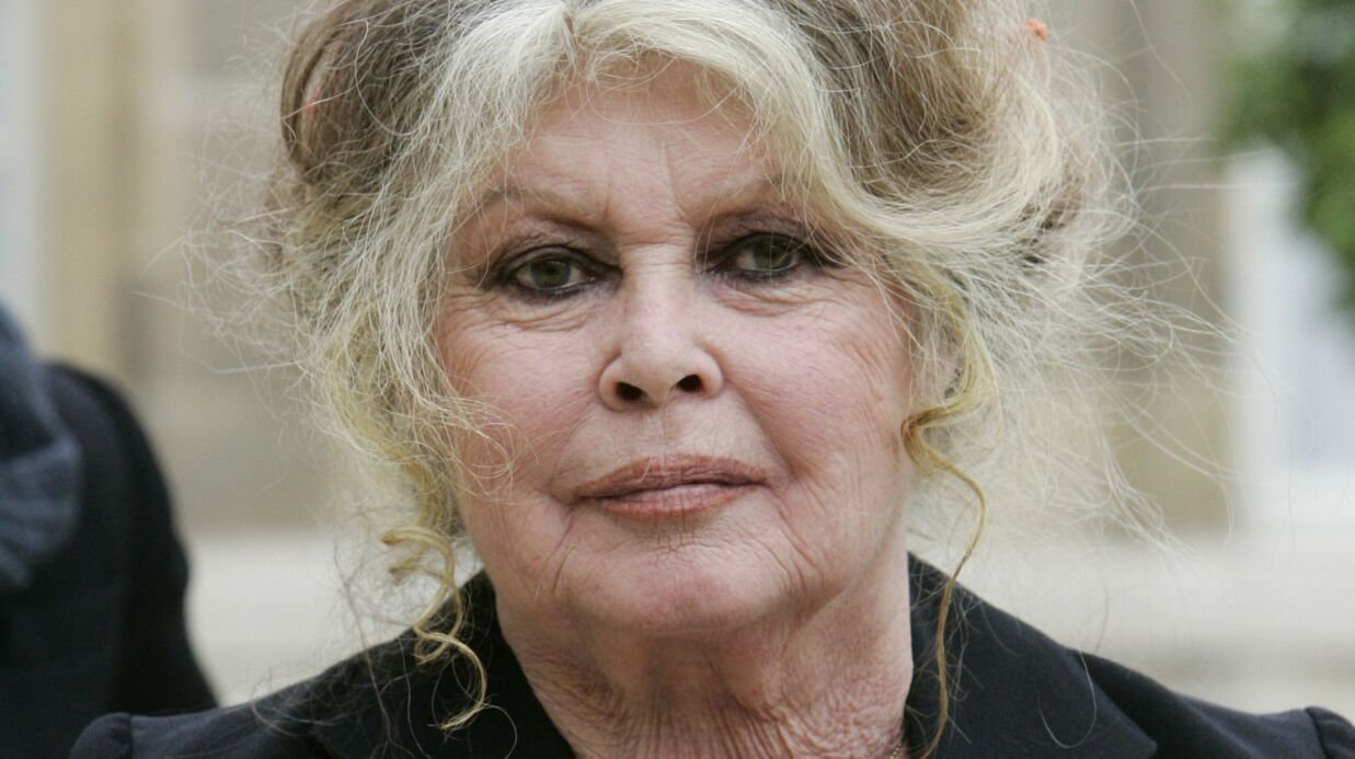 Brigitte Bardot: sa lettre salée à Donald Trump, qui a autorisé l'importation de trophées d'éléphants