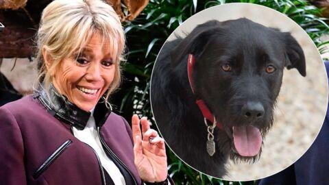 Brigitte Macron surprise en fâcheuse position avec son chien Nemo sur les Champs Elysées