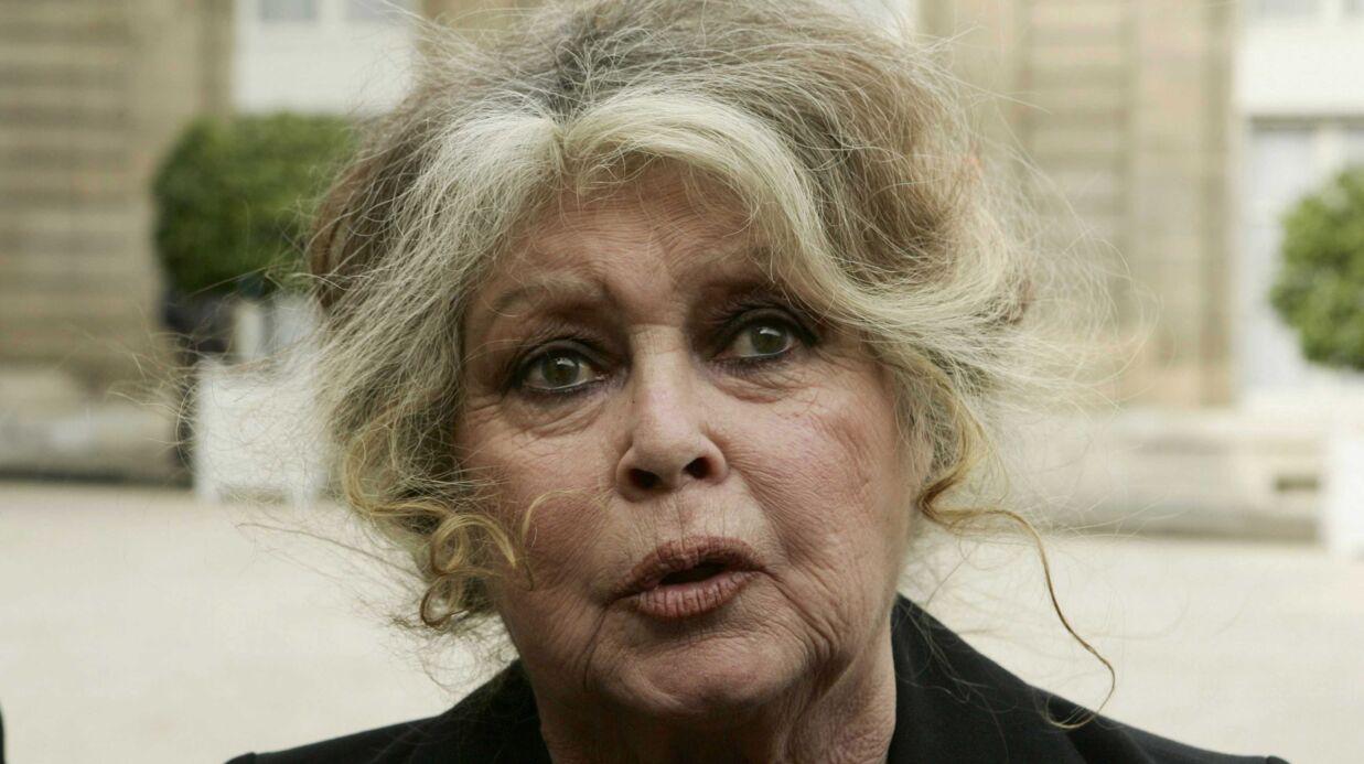 Pour Brigitte Bardot, les actrices qui dénoncent le harcèlement sexuel «font les allumeuses avec les producteurs»