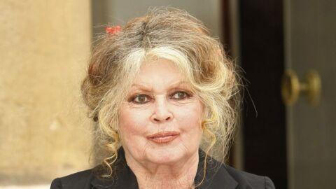 Brigitte Bardot: pourquoi a-t-elle refusé la chimiothérapie pour soigner son cancer du sein?