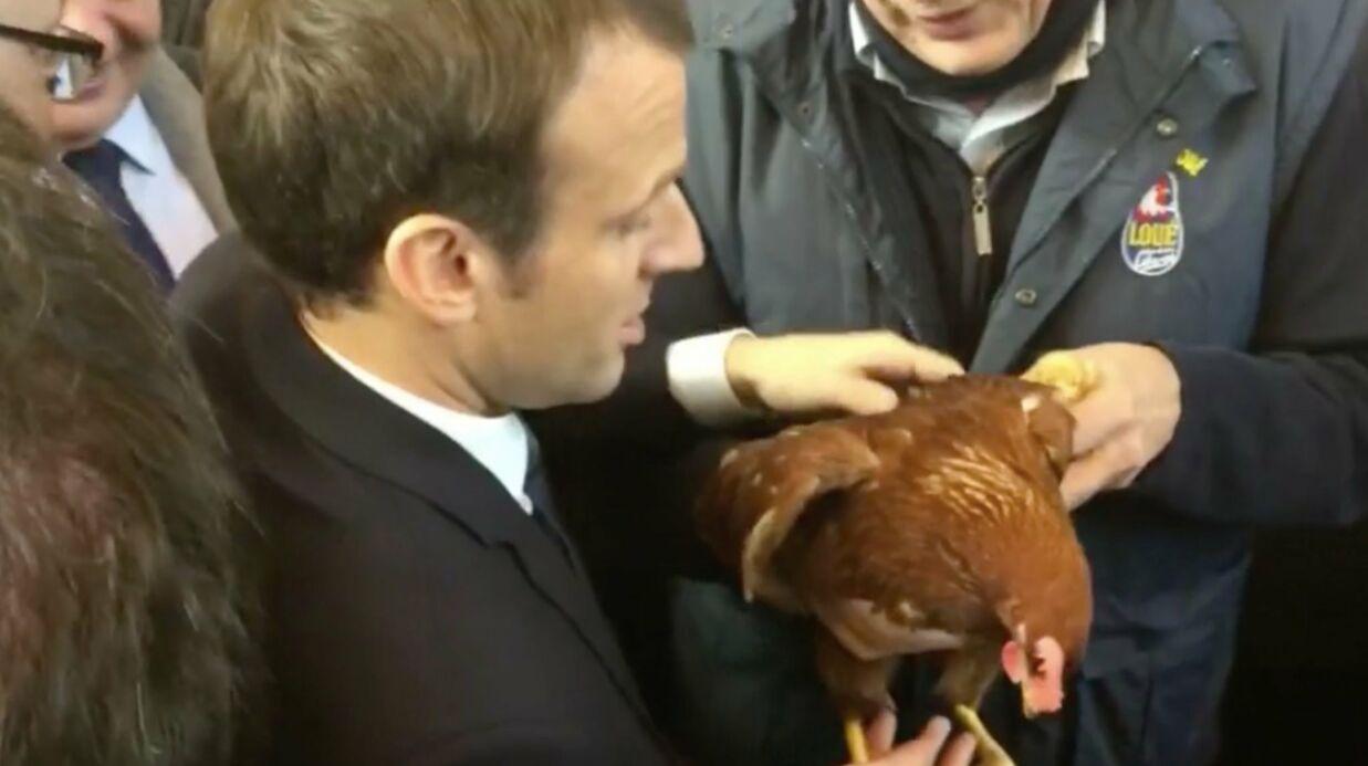 VIDEO L'étonnant cadeau d'un éleveur à Emmanuel Macron au Salon de l'agriculture