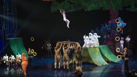 L'acrobate français Yann Arnaud fait une chute mortelle en pleine représentation du Cirque du Soleil