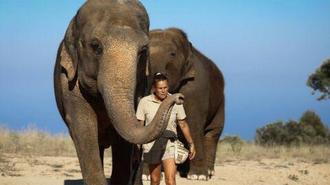 Stéphanie de Monaco en deuil: Népal, l'éléphante sauvée par la princesse est morte