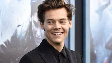 Harry Styles va produire une série retraçant sa vie juste avant les One Direction