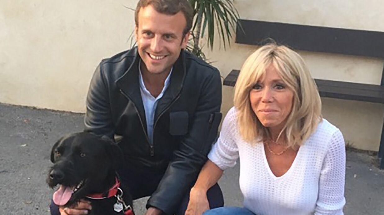 Emmanuel Macron: la directrice de la SPA d'où vient son chien Nemo sur le point d'être virée