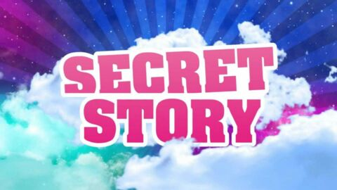 Secret Story: une ancienne candidate annonce sa première grossesse