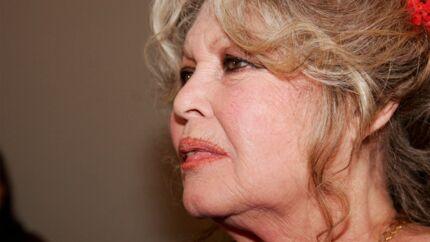 Brigitte Bardot: très amaigrie et affaiblie pour les obsèques de sa grande amie Anne Dussart