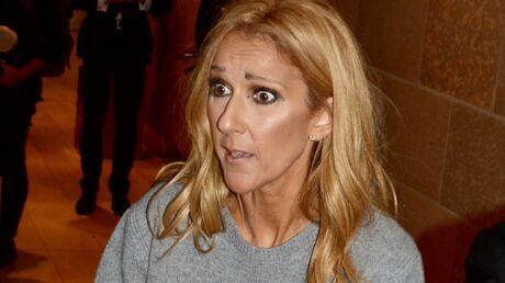PHOTOS Céline Dion rencontre ses fans dans une tenue plutôt hallucinante