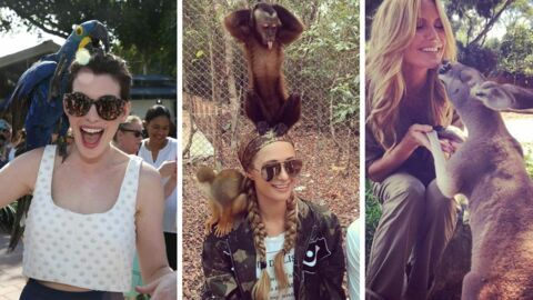 PHOTOS Les people posent avec des animaux… et ce ne sont plus eux les stars