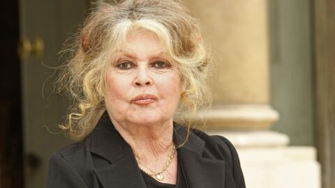 Brigitte Bardot furieuse: son énorme tacle contre Nicolas Hulot