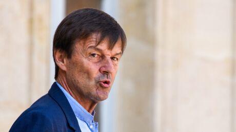Nicolas Hulot répond à Brigitte Bardot: «Je ne supporte plus les démagos de tout poil»