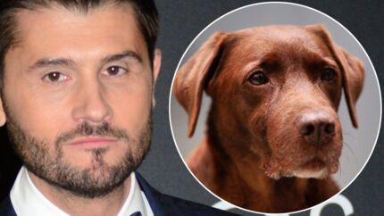 PHOTO Christophe Beaugrand: ses derniers mots à sa chienne Colby, disparue hier soir