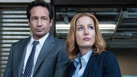 PHOTOS Gillian Anderson (X-Files): découvrez l'incroyable reconversion de l'actrice