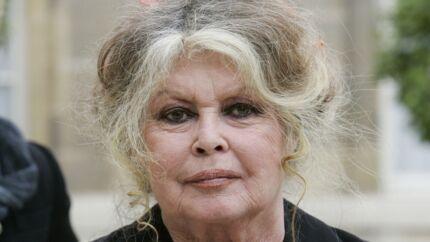 Nicolas Hulot quitte le gouvernement: Brigitte Bardot est «ravie»