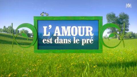 L'amour est dans le pré: combien de temps ont les agriculteurs pour choisir leurs prétendants?