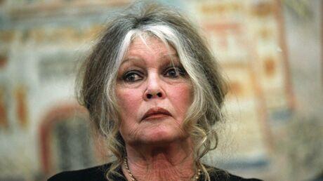 Brigitte Bardot au plus mal: son chien Roudoudou est mort