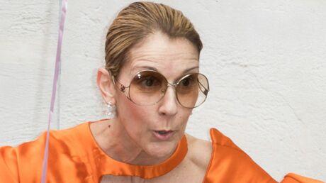 PHOTOS Céline Dion sexy en cuir et bottes poilues, elle s'offre un tour de manège