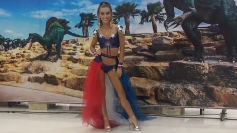 Miss Univers 2018 : Eva Colas présente son costume national, les internautes la descendent