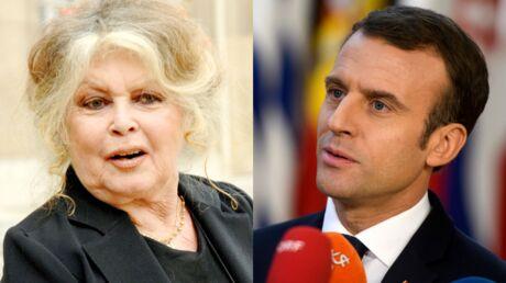 Brigitte Bardot accuse Emmanuel Macron de faire de la France «un centre de loisirs pour extermination d'animaux»