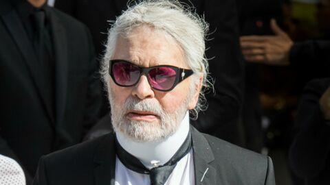 Mort de Karl Lagerfeld: le couturier avait désigné sa chatte Choupette comme héritière