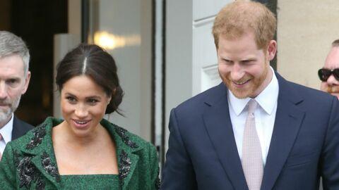 Bébé du prince Harry et Meghan Markle: l'étrange question à laquelle des scientifiques tentent de répondre