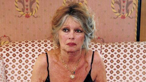 Brigitte Bardot: ce jour où, par jalousie, une femme l'a attaquée à coups de fourchette