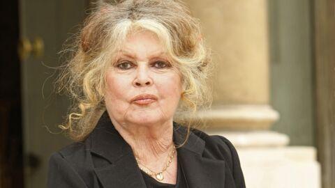 Brigitte Bardot pas faite pour être mère: ses mots très durs envers son fils à sa naissance