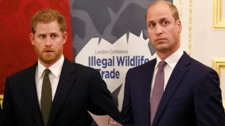 PHOTOS Harry et William: pourquoi la messe de Pâques prouve que rien ne va plus entre les deux frères
