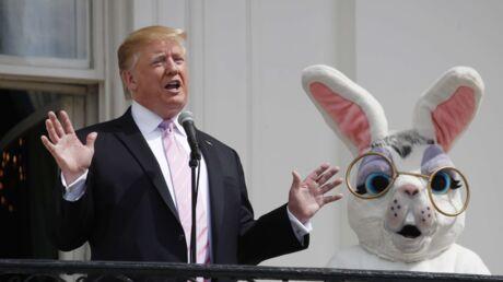 photos-donald-trump-provoque-l-hilarite-des-internautes-en-posant-avec-un-gros-lapin