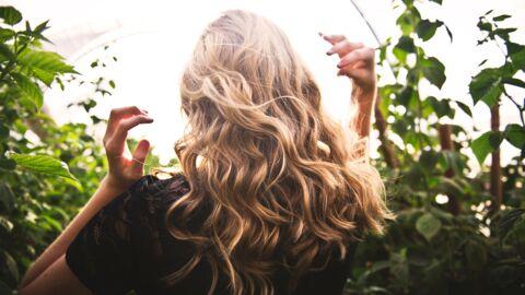 Shampooing naturel – Le top 10 des recettes à réaliser soi-même