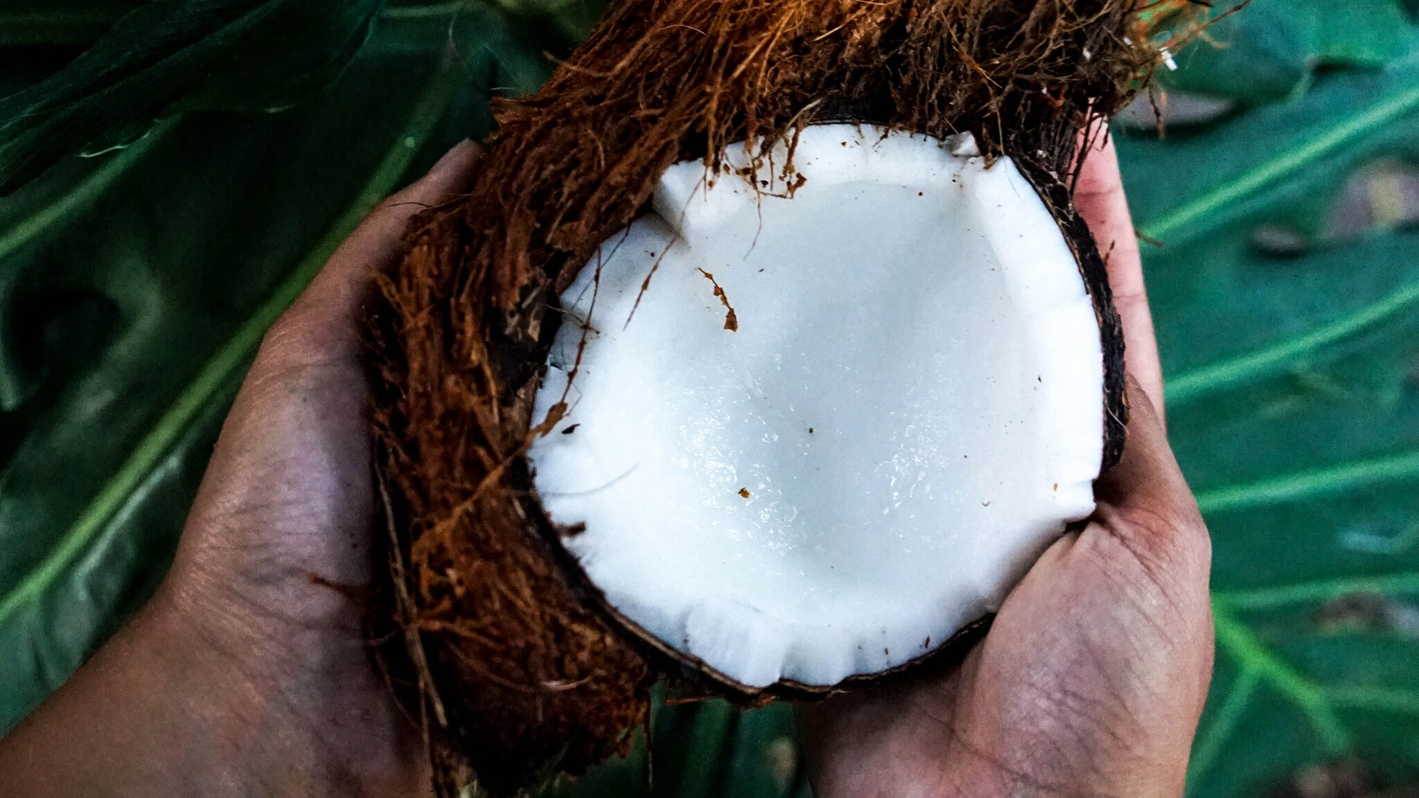 Découvrez nos 15 produits préférés à base de coco