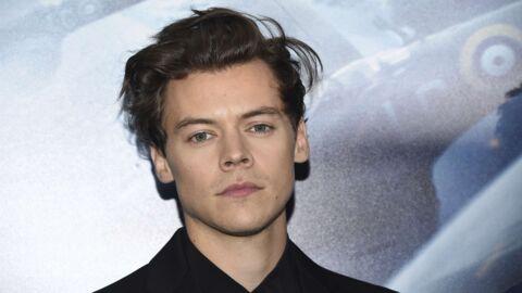 Harry Styles envisagé pour jouer le prince dans La petite sirène, il refuse le rôle