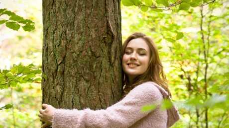 Sylvothérapie: découvrez comment améliorer votre bien-être grâce aux arbres