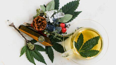 Les bienfaits du thé vert pour notre peau