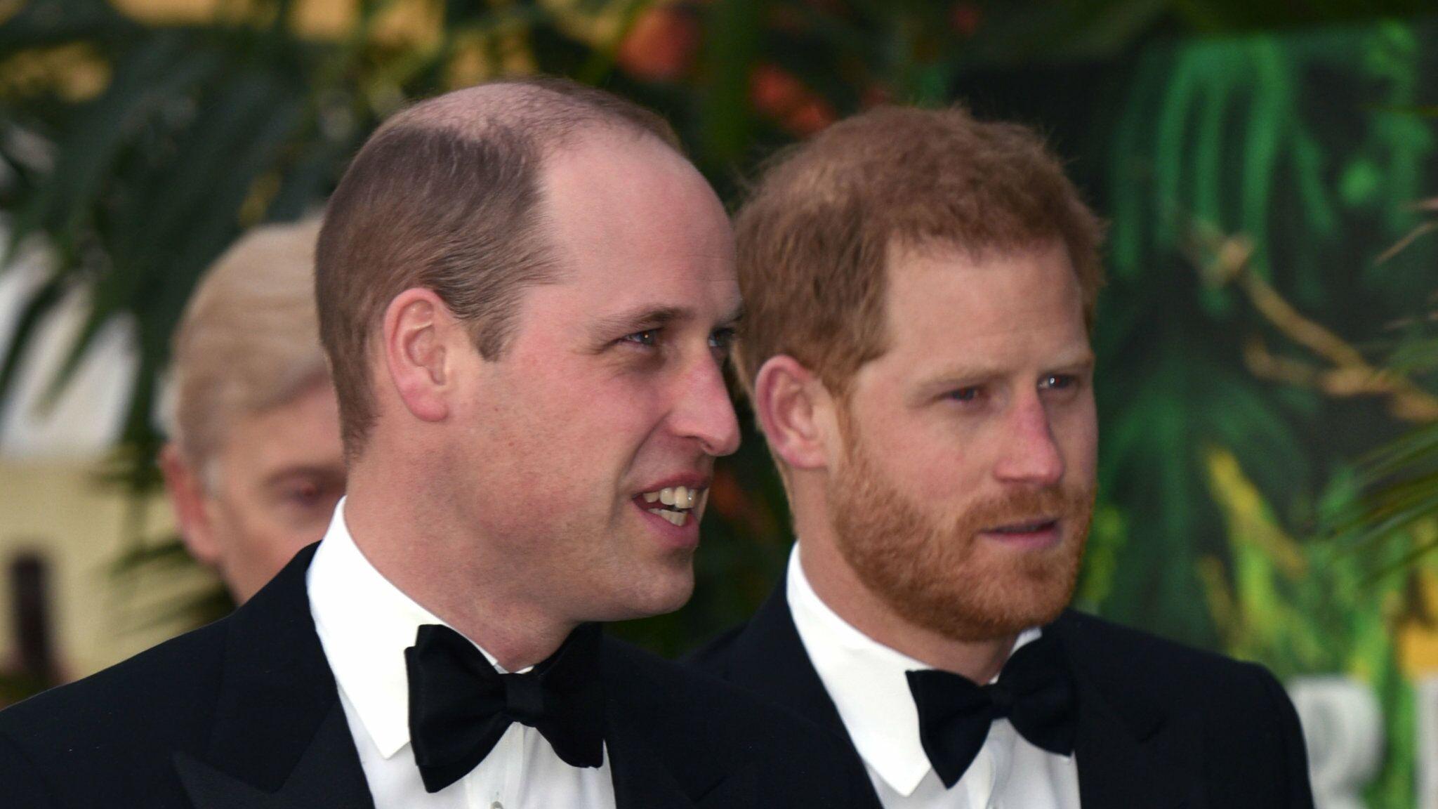 William et Harry : séropositif, l'ancien rugbyman Gareth Thomas reçoit leur soutien