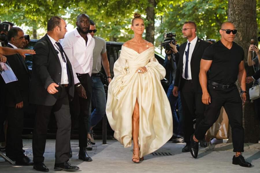 Do Céline Dion : Le mix des volumes entre les manches amples et la robe près du corps
