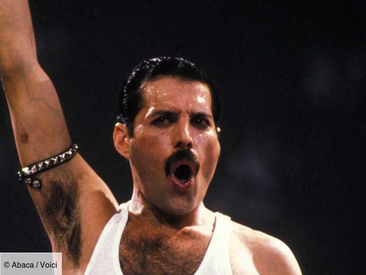 Freddie Mercury : son dernier cadeau de Noël bouleversant pour Elton John - Voici